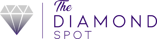 The-Diamond-Spot-Primary-Logo-Design_Color_Horizontal_sm.png